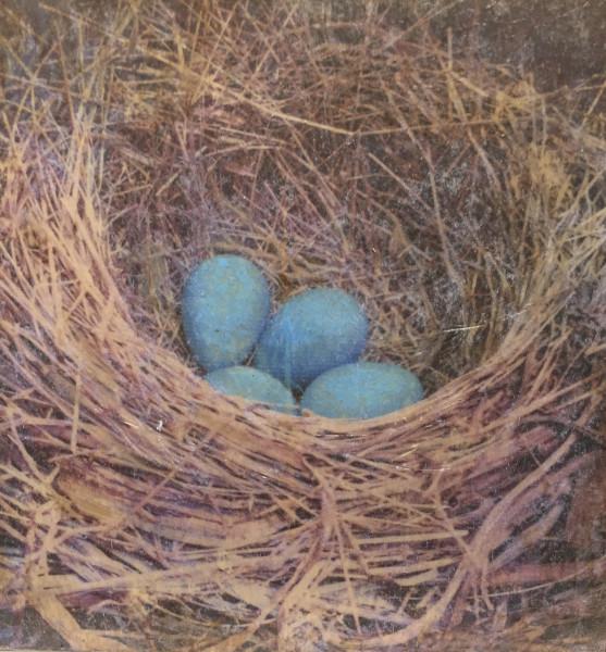 Nest transfer prints