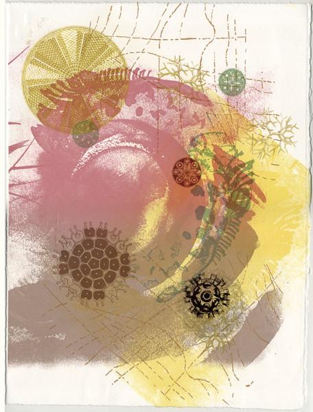 Haeckel's Radiolaria