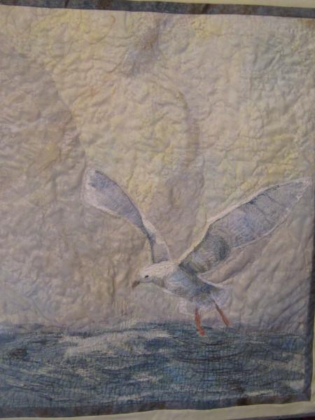 DeGarthe's Seagull