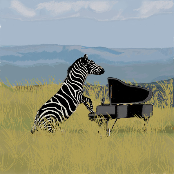 Zebra Pianist 18x24 only