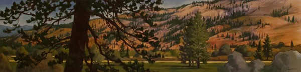"""Thompson Valley - pasture light"""