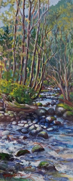 """Stone shadows - Spring creek"""