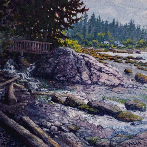 Backlit morning - Camp creek