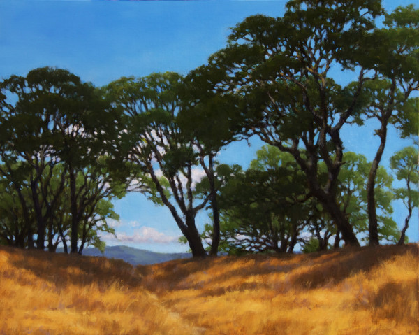Deer path Through the Oaks (Hopland)