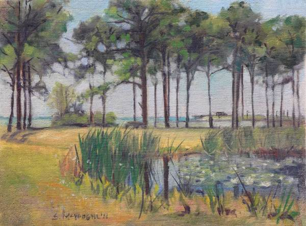 Water Lillies and Pines