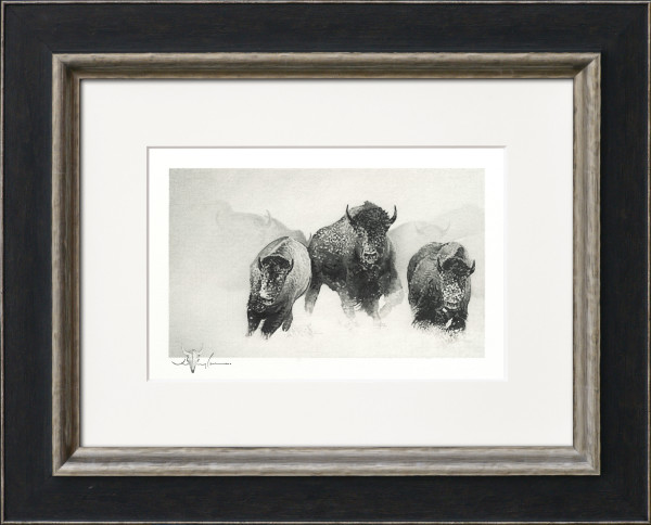 Breaking Trail: Bison Series: Original