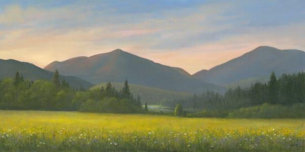 Adirondack Loj Road, goldenrod and wildflowers