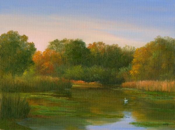Swan on Baxter Mill Pond