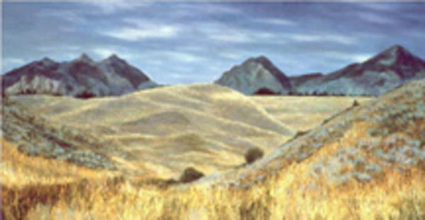 Idaho Plain