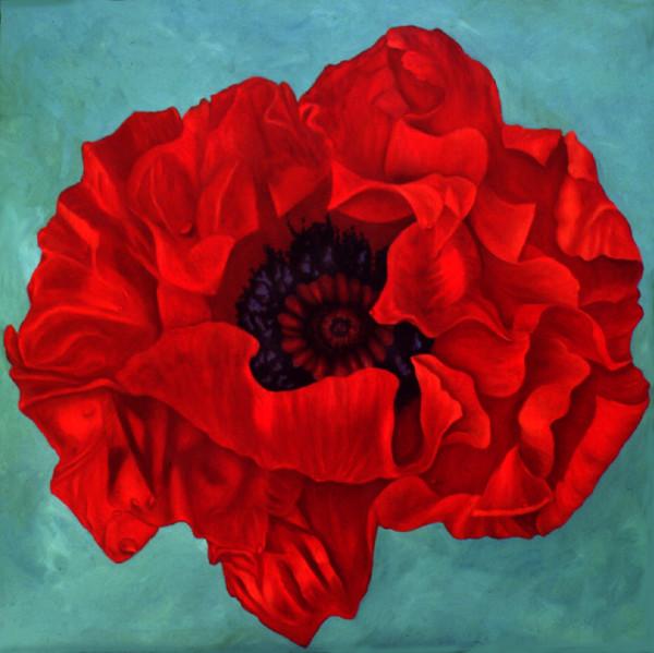 Trummelbech Poppy
