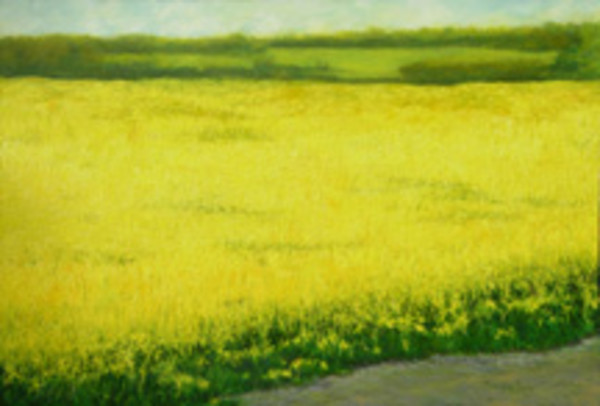 Yellow Fields: Humlebaek