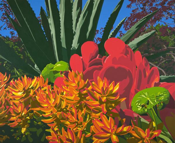 Downtown Succulents