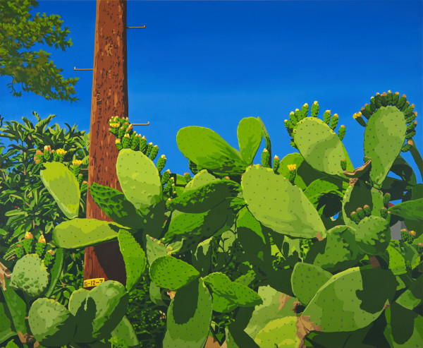 Mount Washington Cactus