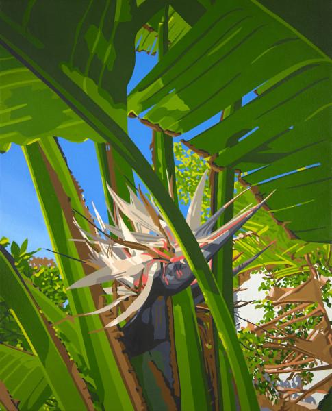 Van Nuys Paradise