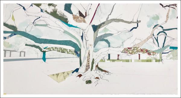"Audubon Park Tree I  29° 56' 01"" N 90° 07' 21.5"" W"