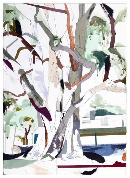Carmel Eucalyptus I