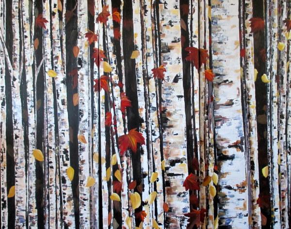 Birch Bliss
