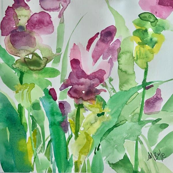 Turmeric plant 1