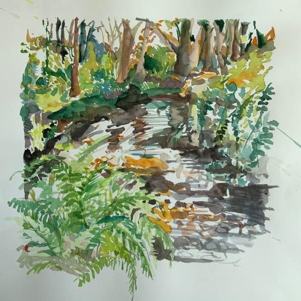 Riverside Fern, Deerpark