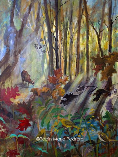 Deer at Water in Woods