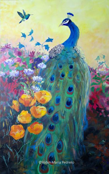 Hummingbird and Peacock
