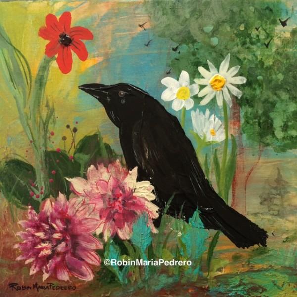 Thursday's Crow has Far to Go