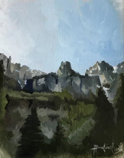 A View up Bear Creek