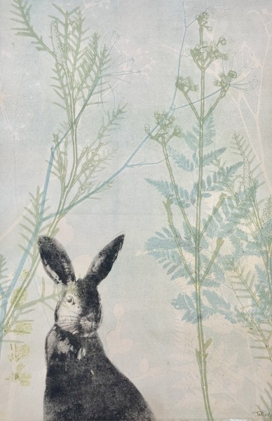 The love of a little hare (Hasli)