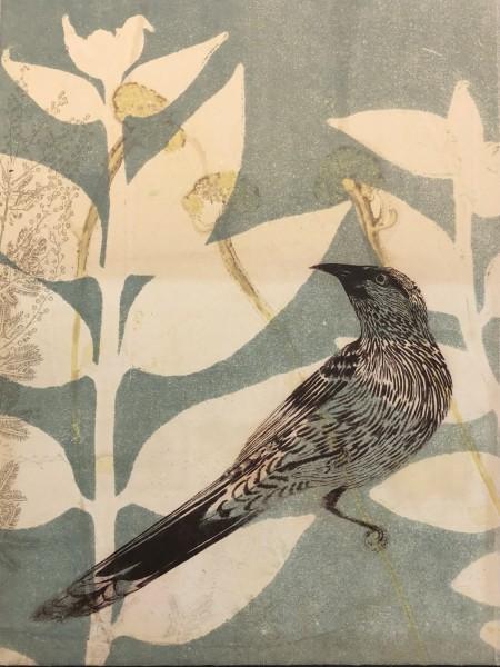 Attentive wattlebird in the brush
