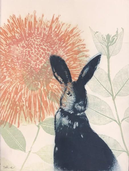 Pink Waratah and blue rabbit