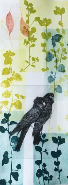 Twin Black Cockatoos