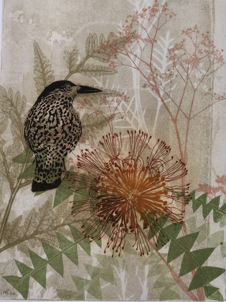 Looking forward, Looking back - Wattlebird