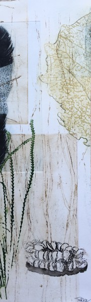 Rustic banksia and black cockatoo feather