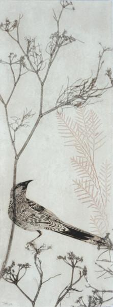 Wattlebird resting on a branch (framed)