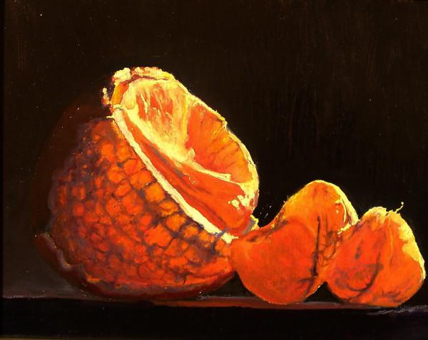 Study of Orange