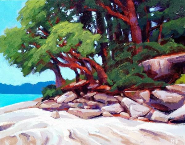 Arbutus Beach Study