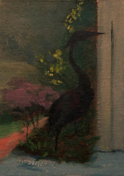 Bird in Mary's garden