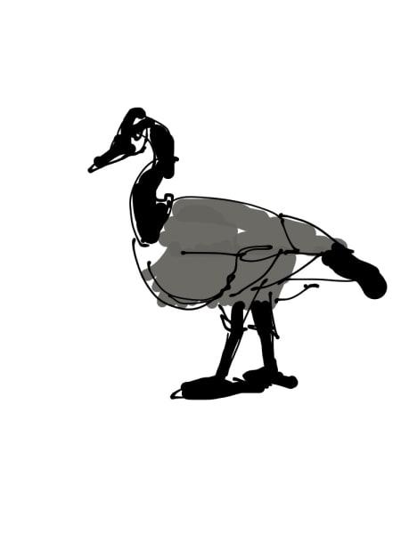 2019 - Goose #2 of 5