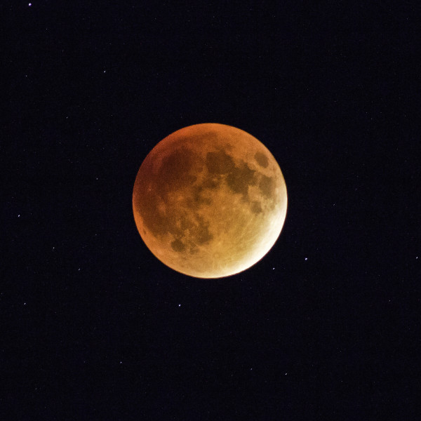 Eclipse, Blood Moon