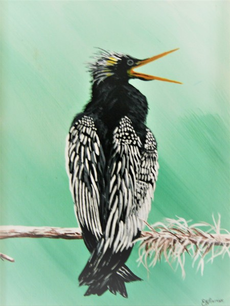 """""""A Squawking Bird"""""""