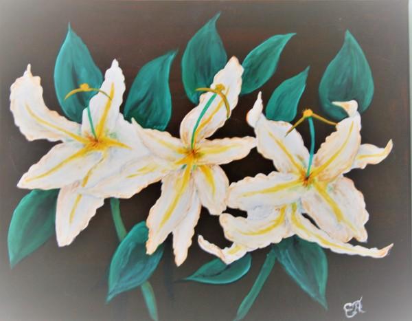 """Beautiful White Orchids"""
