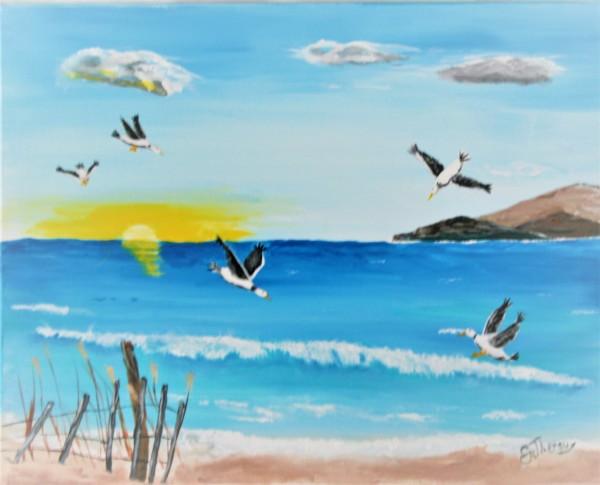 """Seagulls in the Sun"""