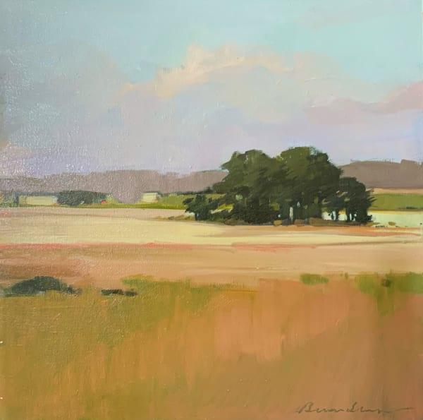Katama Meadow in August