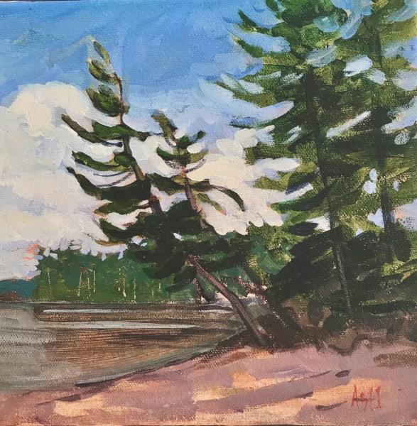 Leaning Pine, Sandbar