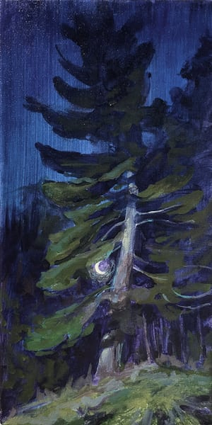 Crescent Moon and White Pine