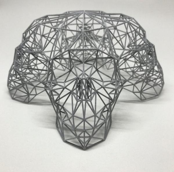 Quad Skull Cage