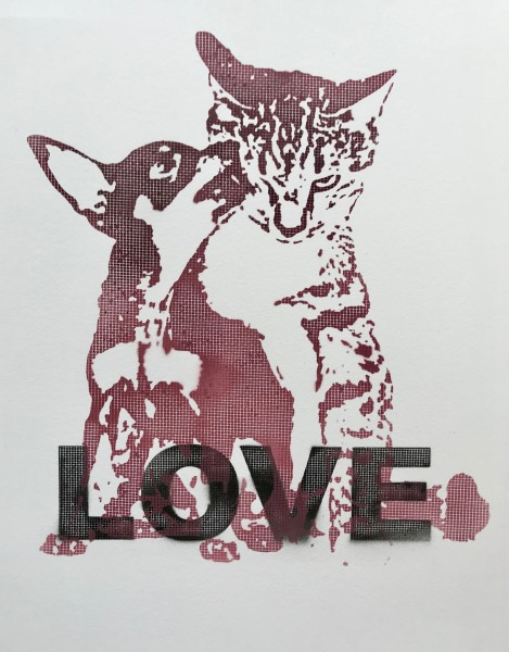 Dog Cat Love
