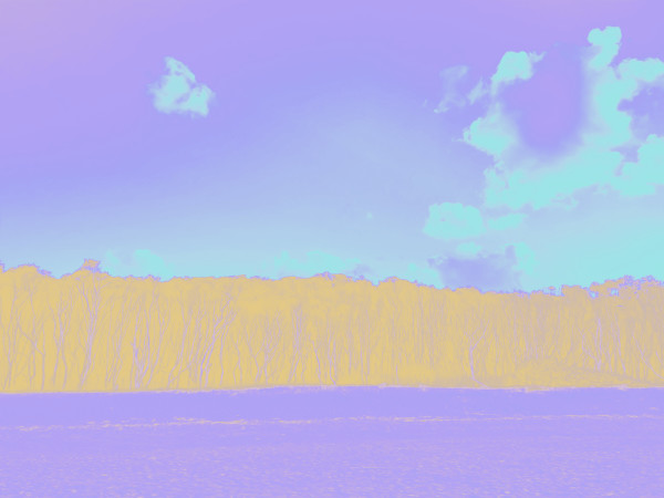 Cylinder Beach in Violet