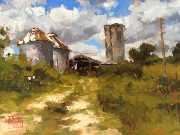 Farm Near Olive Road