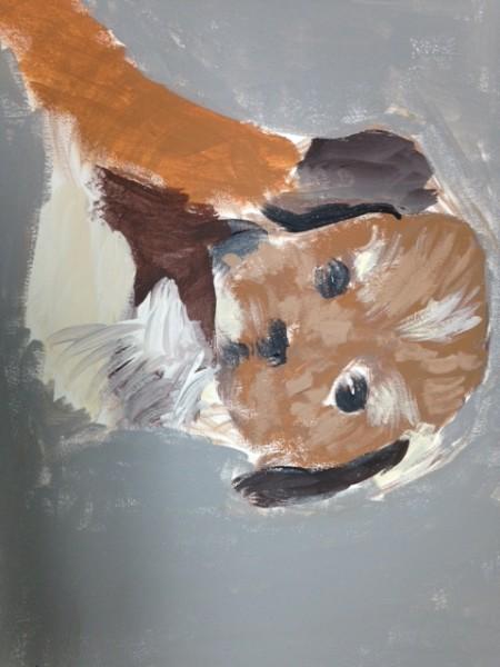 Gray Pup